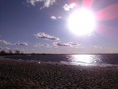 stykówka - morze